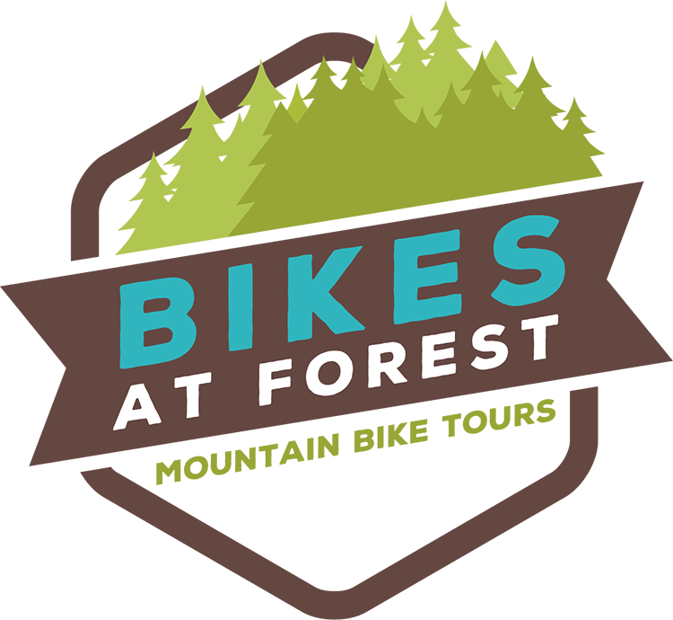 Bikes at Forest